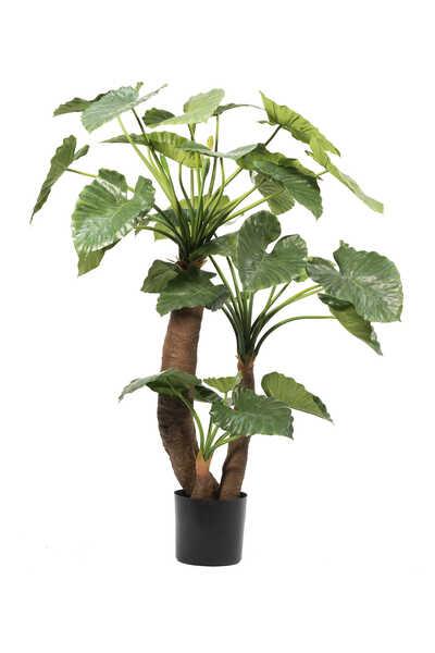 نباتات شجر ألوكاسيا صناعية