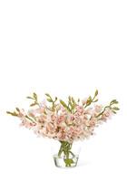 NDI Flwr Orchid Cymbidium, Pnk, Gls Vase